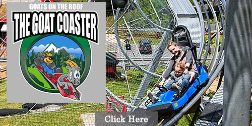 The Coaster at Goats on the Roof